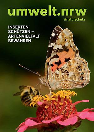 umwelt.nrw – Insekten schützen – Artenvielfalt bewahren